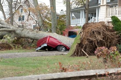 Hurricane Sandy Relief - istock