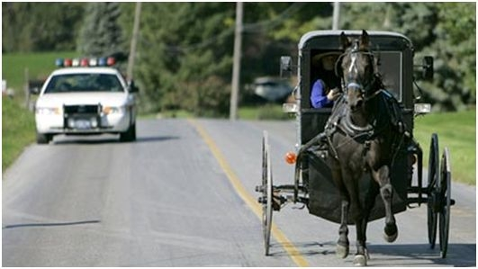 Arrested Amish