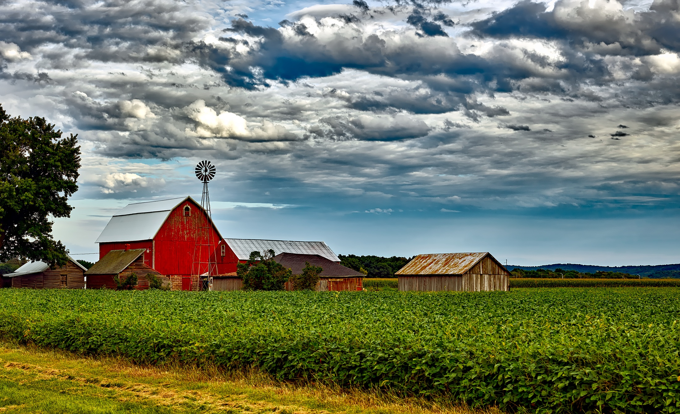 agriculture committee s farm bill proposal is a mixed bag freedomworks